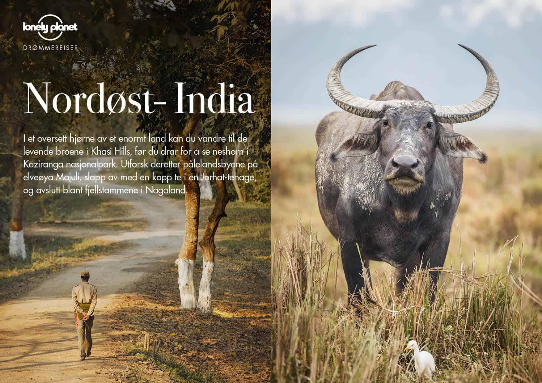 Nordøst-India