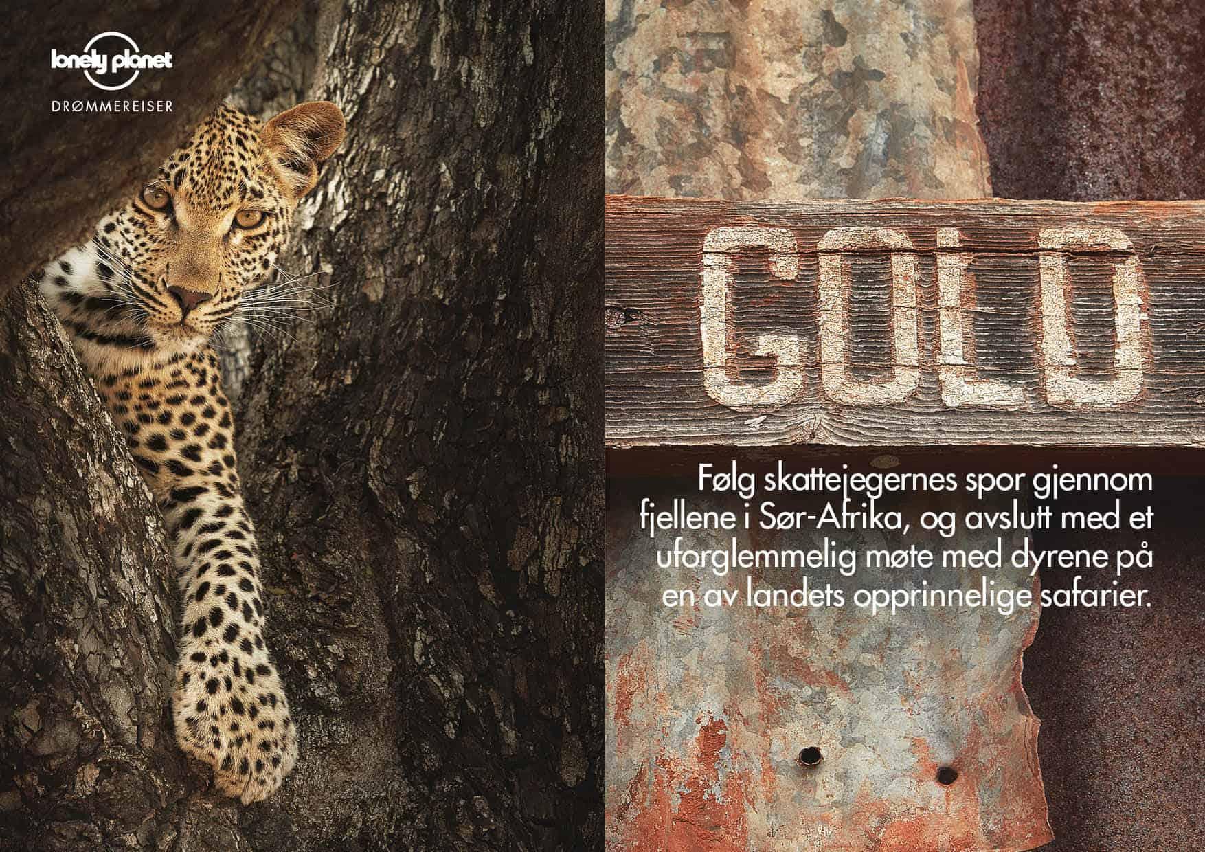 Sør-Afrika: GOLD